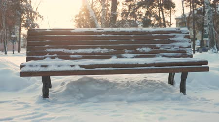 juffrouw : Old wooden bench in the city winter park.