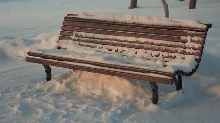 breathing fresh air : Old wooden bench in the city winter park.