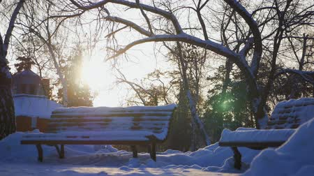 興味深い : Old wooden bench in the city winter park.