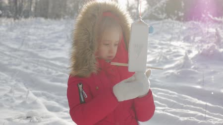 alimentador : Pretty cute girl at winter park with bird feeder. Bird feeder on tree, winter vacation and holidays concept, children outdoor activities.