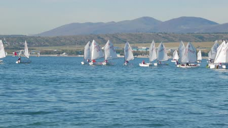yat yarışı : Sailboats participate in sailing regatta. Sailing boats on the sea. Stok Video