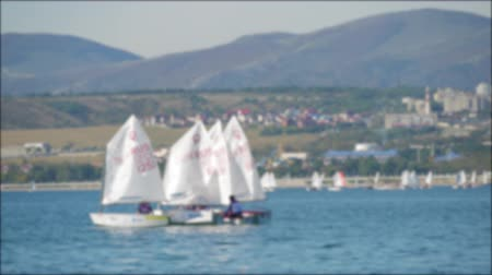 регата : Sailboats participate in sailing regatta. Sailing boats on the sea. Стоковые видеозаписи