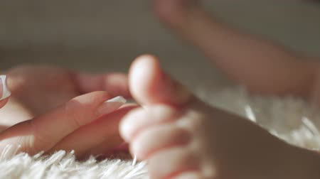 puericultura : Little baby feet in hands of mother, close up. Stock Footage