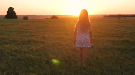 szénaboglya : Pretty child girl walking in the meadow at sunset. Stock mozgókép