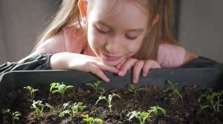 горшках : Fun little gardener care for plants. Cute little child girl planting seedlings. Spring concept, nature and care.