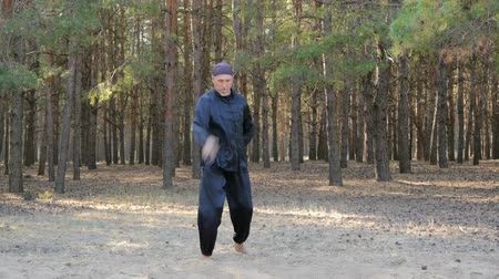 taiji : Rem Plugatar.Master of wushu,wu hsing (five elements)from Ukraine