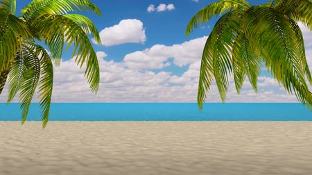 coconut palm tree : 3d,Palm tree leaves over luxury beach