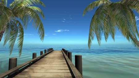 coconut palm tree : 3d, Palm Beach and the sea near the hotel Stock Footage