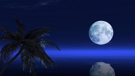 mehtap : Beautiful  moon reflected on the calm water of a tropical beach Stok Video