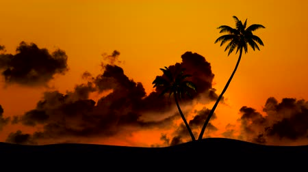 exotikou : Sunset against the backdrop of palm trees and clouds, time-lapse Dostupné videozáznamy