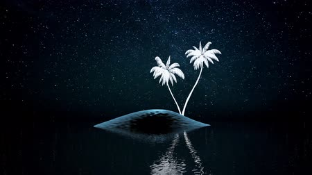 Night scene of palm trees on an island in the sea Vídeos