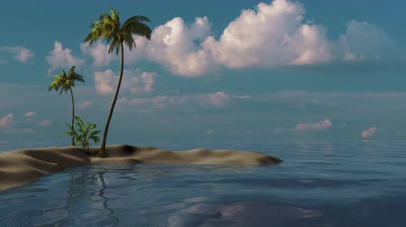 Tropical landscape of palm trees on an island in the sea. 3d animation