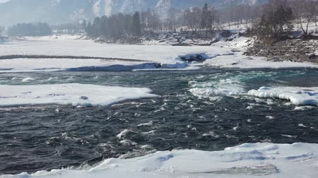 frazil ice : Video panorama of rapids of Altai river Katun with banks covered by ice and snow in winter season, Siberia, Russia