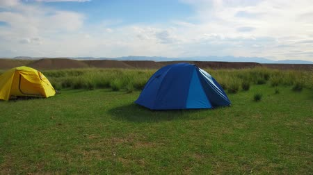 altay : Camping tents in mongolian grassland natural landscape with Achnatherum splendens in south-west Mongolia near river Dzabhan-gol in Govi-Altay province