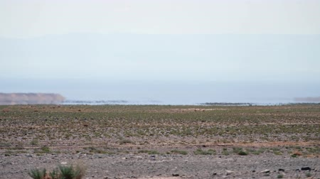 местность : Mirage in mongolian arid stone desert. Optical illusion of water lake oasis on horizon. Western Mongolia. Стоковые видеозаписи