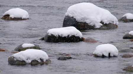 frazil ice : Stones with snow caps in the water of Altai. Siberia, Russia Stock Footage