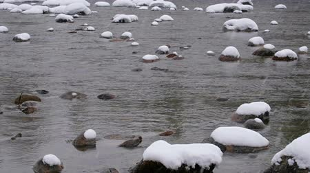 altay : Stones with snow caps in the water of Altai. Siberia, Russia Stok Video
