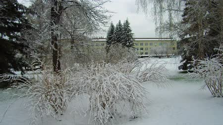 сугроб : Territory and building of Central Siberian siberian botanical garden in Novosibirsk after late spring snowfall, Russia