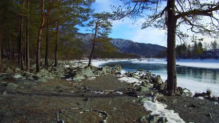 Walking along the Altai river. Siberia Russia