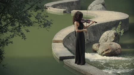 string instrument : Elegant brunette violinist in forest plays on bridge outdoors