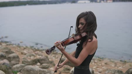 houslista : Elegant girl with violin. Brunette violinist in dress plays at sea background