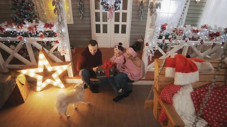ailelerin : Portrait of family with little daughter and dog on porch with Christmas tree