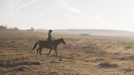 Young woman riding horse at sunrise in field. Cowgirl at brown horse outdoors
