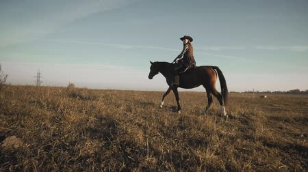 Beautiful cowgirl riding horse in background sunrise field. Young woman at horse