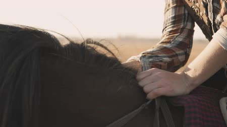 Woman smoothes horses mane. Young woman sitting on horse and caresses mane