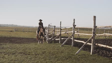Beautiful woman riding horse with dog along fence. Young cowgirl at brown horse