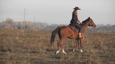 stallion : Beautiful woman riding horse at sunrise field. Young cowgirl at brown horse