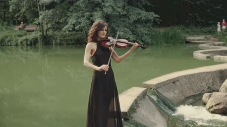 the conception : Elegant brunette violinist in forest plays on bridge outdoors