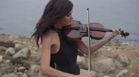 houslista : Beautiful girl with violin. Young violinist in dress plays at sea background