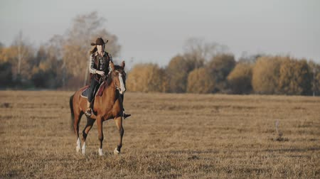 koń : Beautiful woman riding horse at sunrise in field. Cowgirl at brown horse
