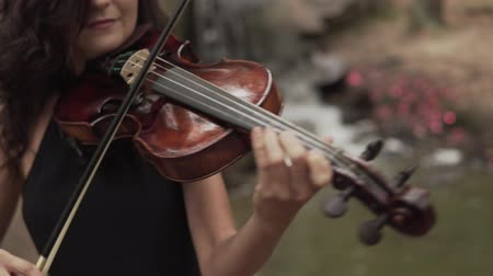 houslista : Young violinist plays with inspiration. Beautiful girl in black dress playing violin in forest with waterfall at background Dostupné videozáznamy