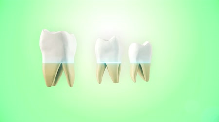 kuvars : Teeth whitening process. Medically accurate tooth 3D animation.