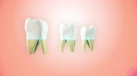 Teeth whitening process. Medically accurate tooth 3D animation.
