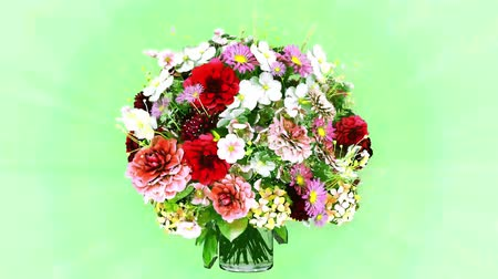 flower buds : Bouquet of flowers rotating realistic animation Stock Footage