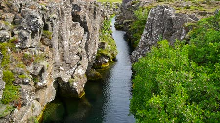 crevice : Stream and rocks in Thingvellir, Iceland Stock Footage