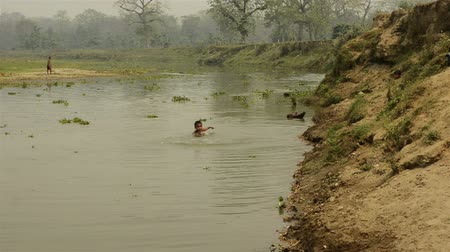 indicus : Nepalese children swimming in the river. Chitwan-Nepal.