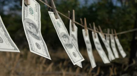 pieniądze : Dollars drying on the rope. The financial concept dollar. The concept of money laundering.