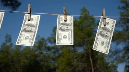 myjnia : Dollars drying on the rope. The financial concept dollar. The concept of money laundering.