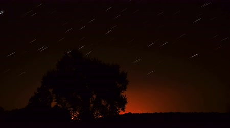 starlit : Stars in the night sky. movement of star. Time-lapse