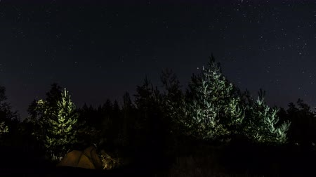 starlit : Tourist tent in the night forest. The movement of stars in the night sky. Time lapse