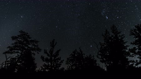 starlit : Starry sky and sunrise. Movement of star. Time lapse
