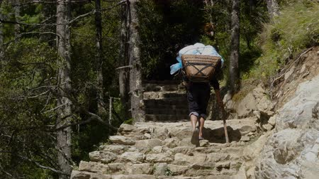 sherpa : The porter bears a heavy load, climbing the stone steps. Track to the base camp of Everest in the Himalayas. Sagarmatha National Park, Nepal Stock Footage