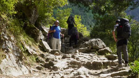 porters : LUKLA, NEPAL - OKTOBER 22, 2017: Many tourists and porters ascend and descend on rocky Lukla-Namche path near Namche village on oktober 22, 2017 in Namche, Nepal Stock Footage