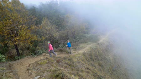 montar : Tourists go through a misty forest. Track to the base camp of Everest in the Himalayas. Sagarmatha National Park, Nepal Stock Footage