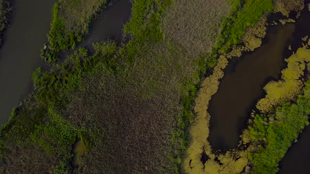 labirent : Aerial View of Lake and green islands Stok Video