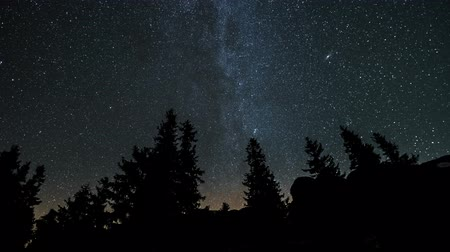 astro : The Milky Way is moving in the night sky over the silhouettes of trees. Timelapse. 4K
